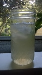 Wood Sorrel Lemonade