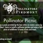 Pollinator Picnic